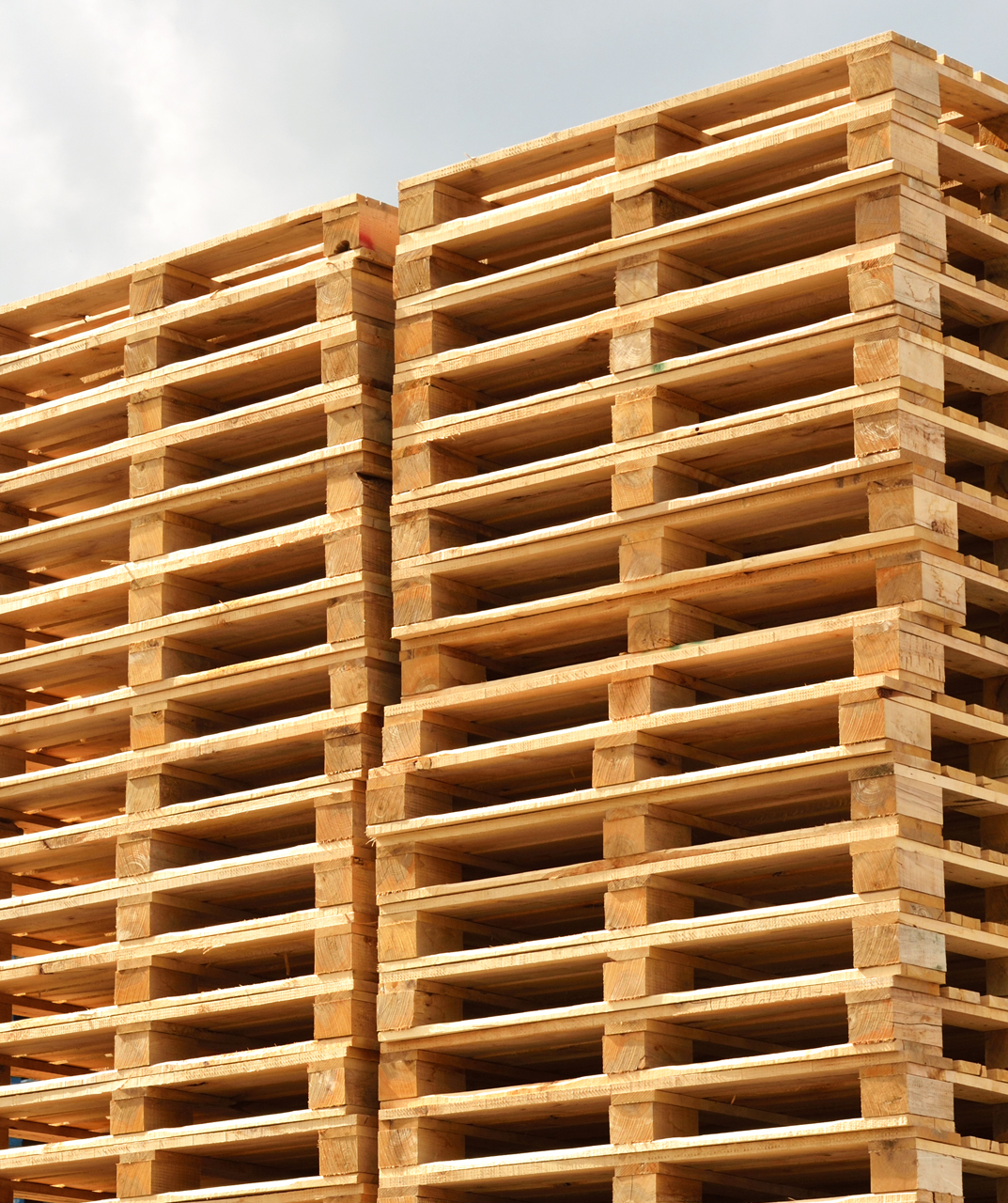 groupe_pallet